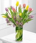 Multi-Colored Tulips Galore