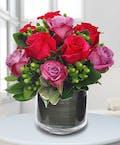 Rose Jubilee