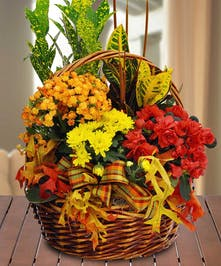 Fall European Garden Basket