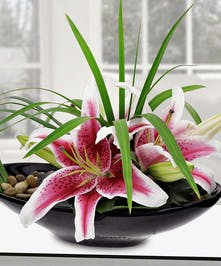 Stargazer Lily and Rock Glorious Arrangement