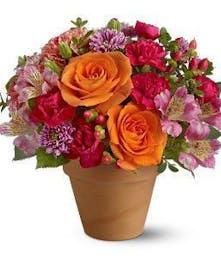 Rose Clay Pot Floral Arrangement