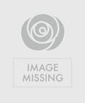 Ford Mustang Candy Bouquet