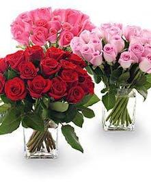 25 Roses Arranged