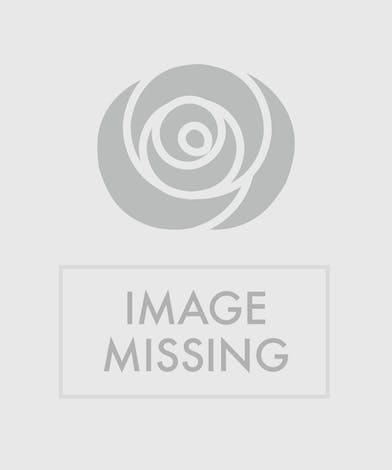 Purple and White Funeral Arrangement