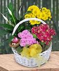 Standard Blooming Garden Basket