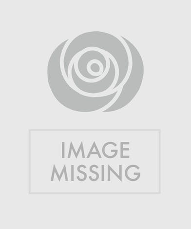 Carnation and Candy Cane Basket Arrangement