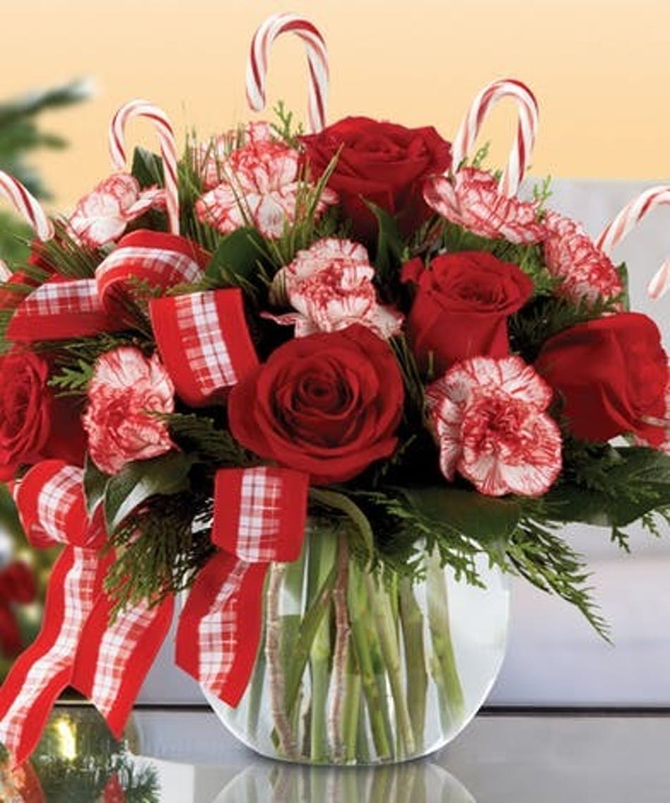 Candy Cane Holiday Bowl Arrangement In Minneapolis Mn Schaaf Floral