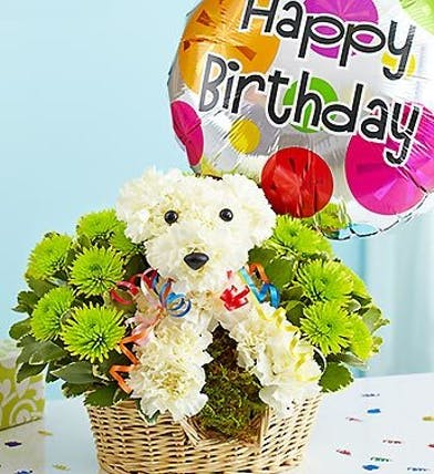 Dog Carnation Floral Arrangement