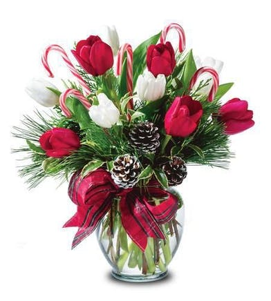 Christmas Tulip Floral Arrangement