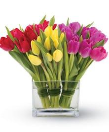Trio of Tulips Arranged