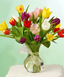 Tulip Spring Arrangement