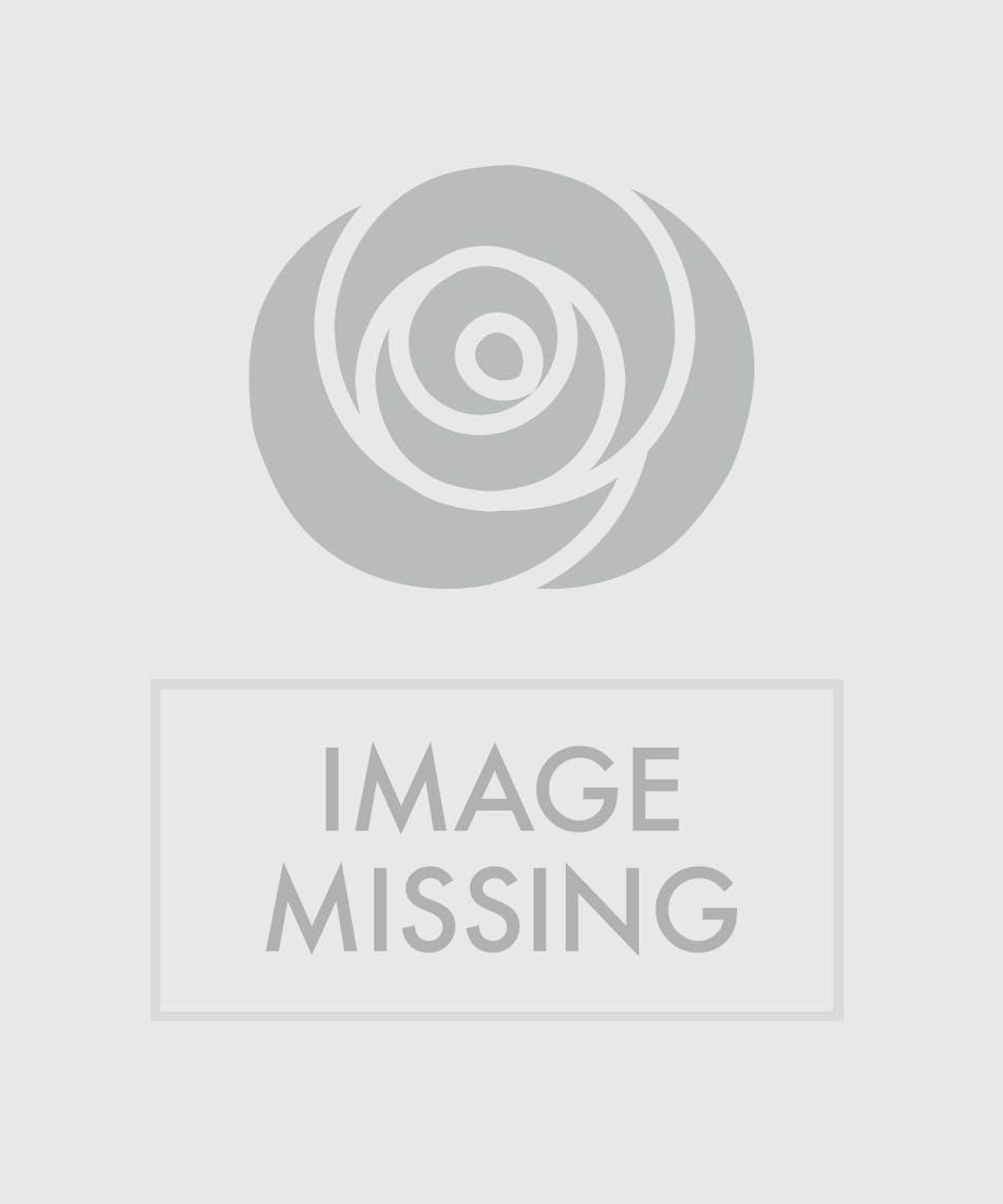 Fiesta gerbera vase arrangement in minneapolis mn schaaf floral gerbera daisy arrangement izmirmasajfo