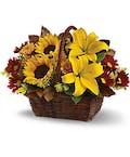 A Golden  Day Basket