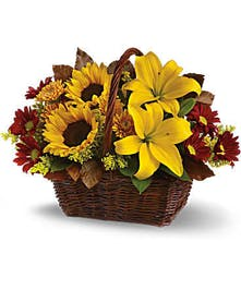 A beautiful basket overflowing with wonderful fall flowers consisting of sunflowers, yellow lilies, gold mums, daisies with a green accent flowers