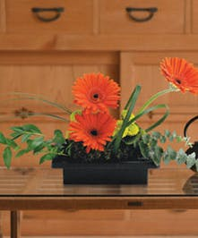 Orange Gerbera Floral Arrangement