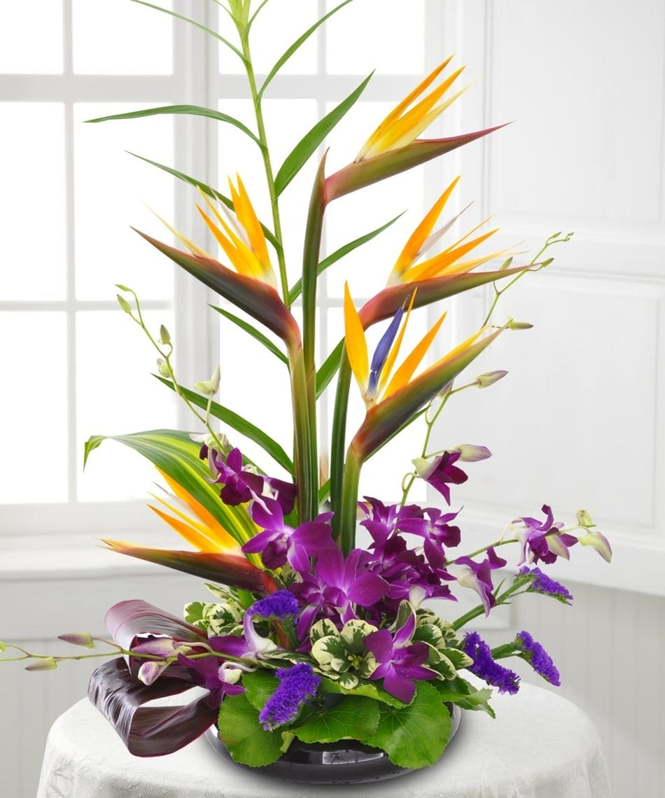 Bird of Paradise and Orchids Arrangement