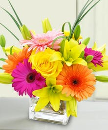 Bright Gerbera, Rose and Lily Arrangement