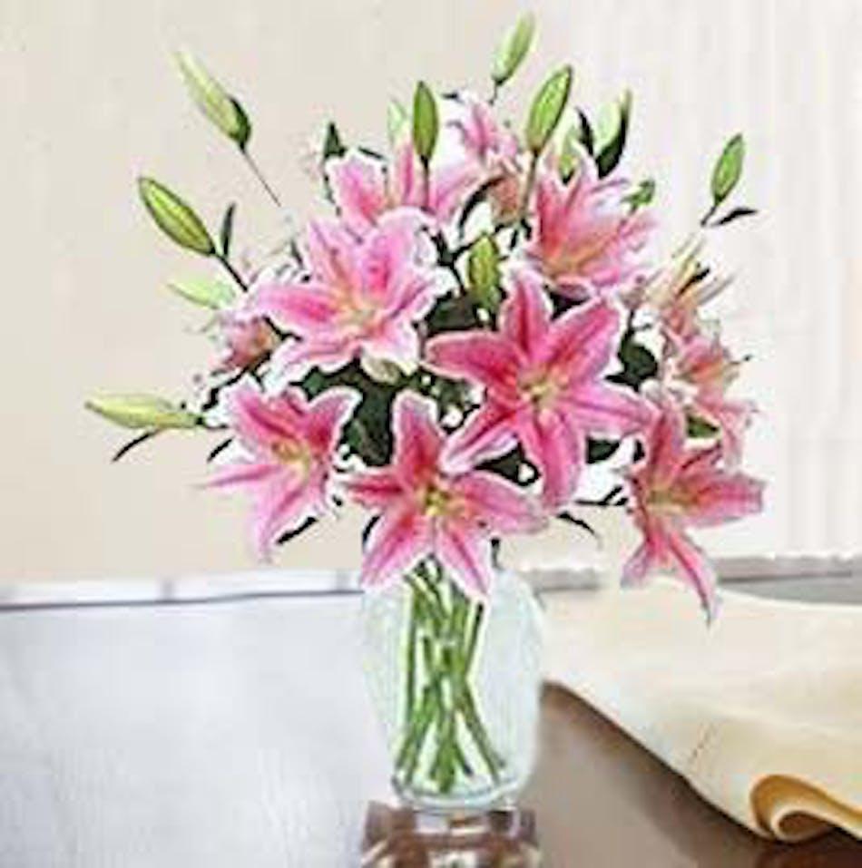 Enchanting Stargazer Lilies In Minneapolis Mn Schaaf Floral