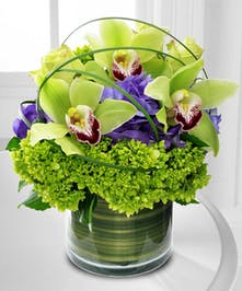 Cymbidium Orchid and Hydrangea Arrangement