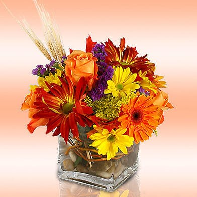 Daisy and Rose Cube Fall Arrangement