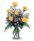 6 Yellow Roses Vased