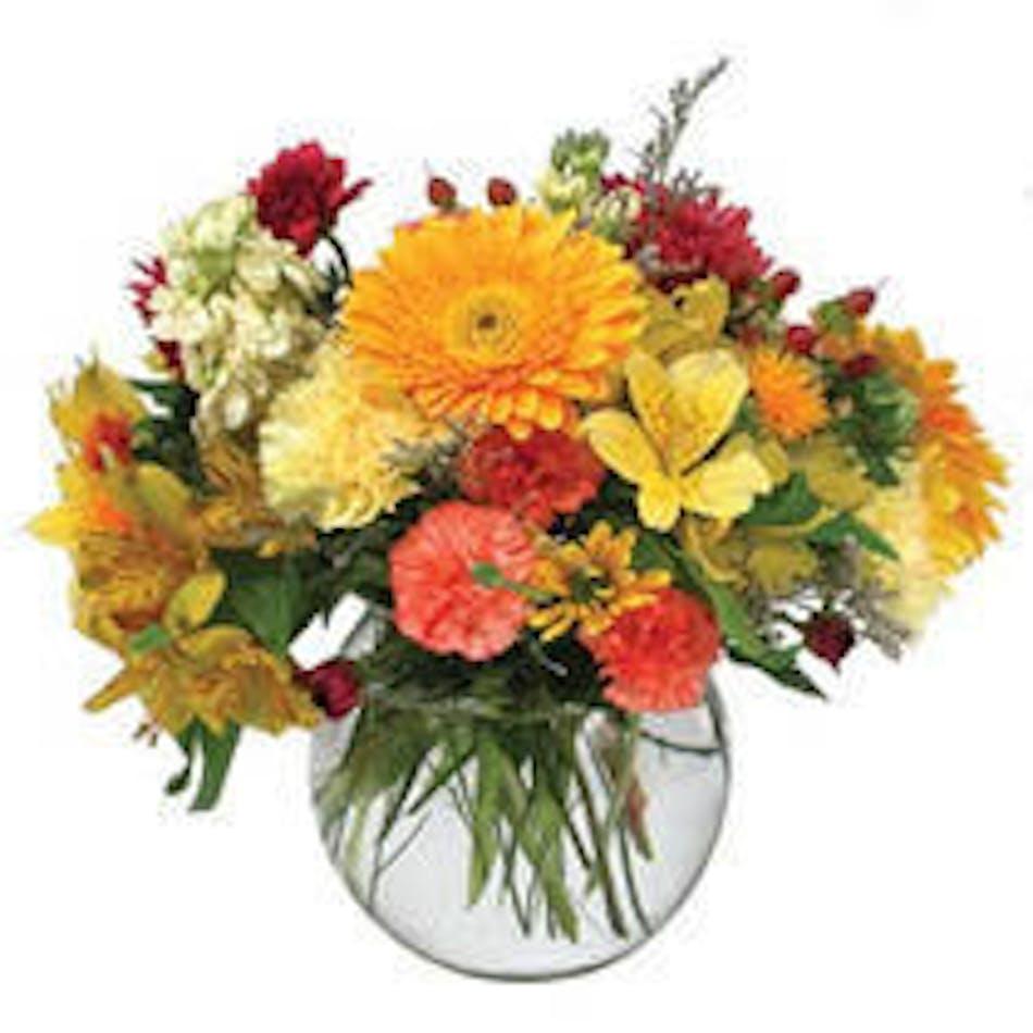Bubble Bowl Mixed Seasonal Flowers