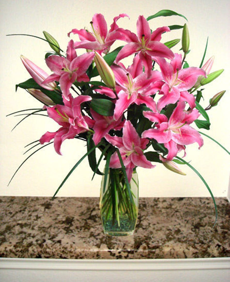 Fragrance Of Spring Stargazer Lilies Arrangement In Minneapolis Mn