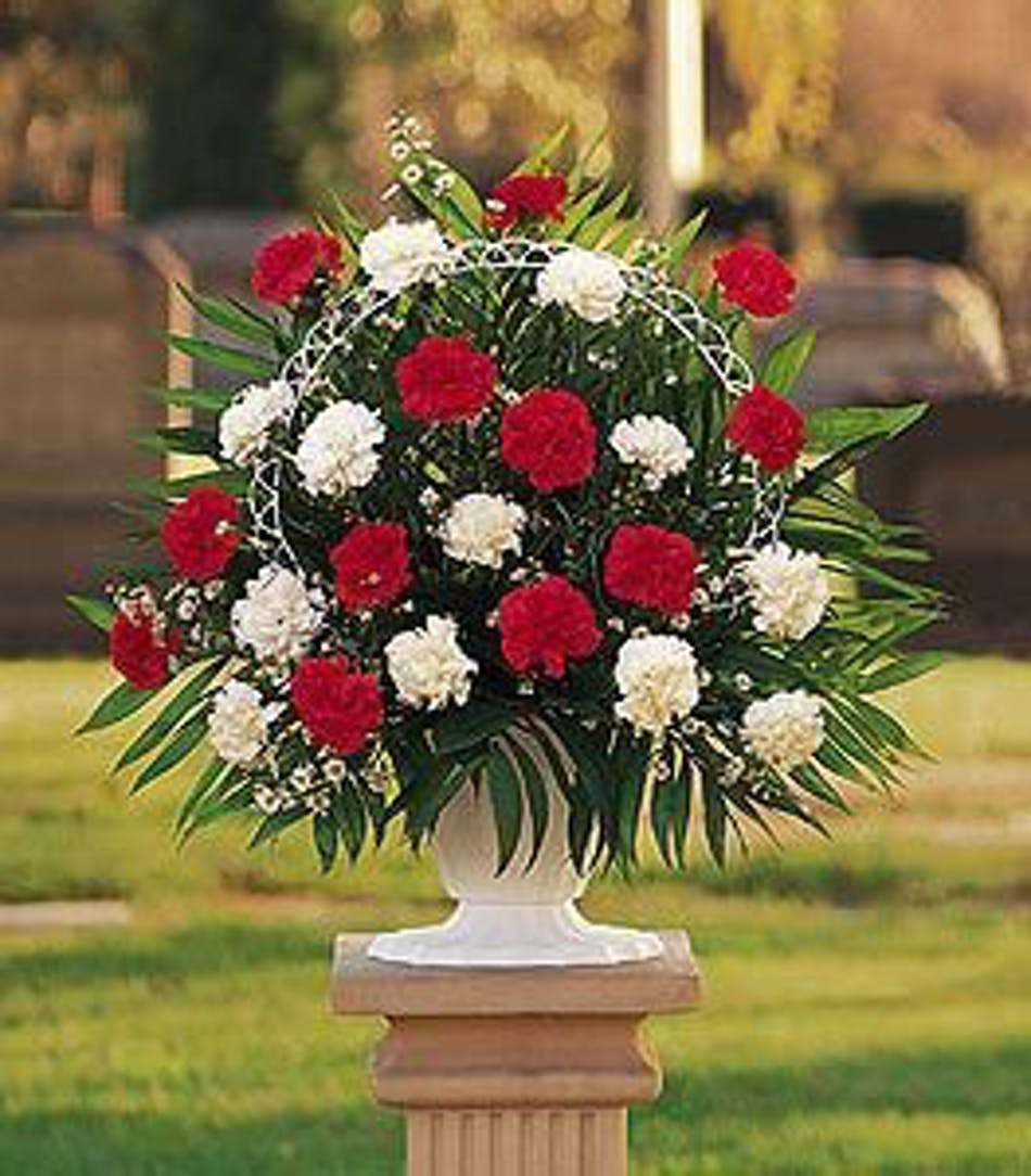 Hope and honor carnation sympathy arrangement in minneapolis mn red and white funeral arrangement izmirmasajfo
