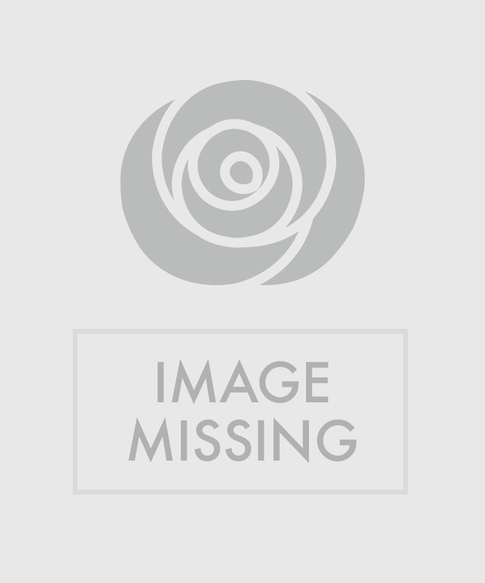 Cardinal Evergreen Arrangement Evergreen Arrangement In