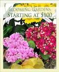 European Blooming Garden