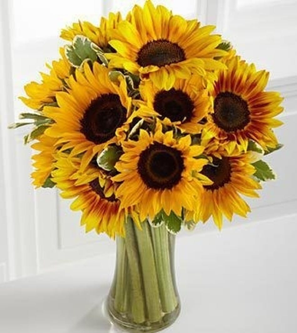 Sunny day sunflower arrangement in minneapolis mn