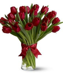 Red Tulips Arranged