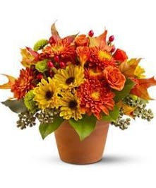 Tercotta Pot Fall Floral Arrangement
