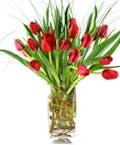 Deluxe Tulip Bouquet