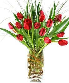 Tulips Arranged