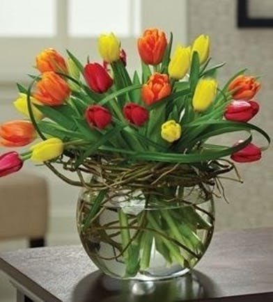 Multicolored Tulips Arranged
