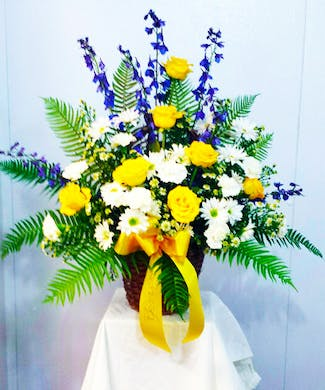 Yellow, White and Blue Traditional