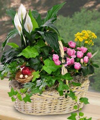 In My Garden Basket