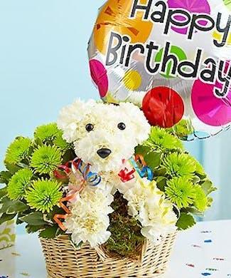 Birthday Party Animal
