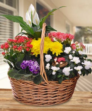 Garden Basket In Bloom