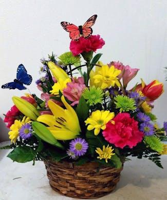 Garden of Butterflies