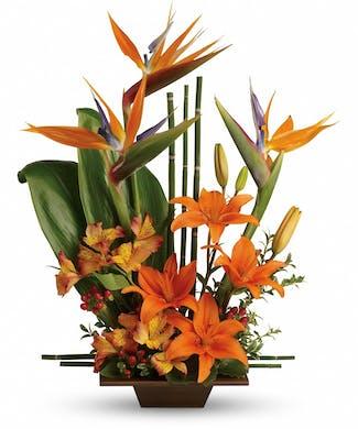 Minneapolis Florist Minneapolis Flower Delivery Schaaf