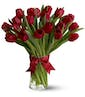 As Shown  15 tulips